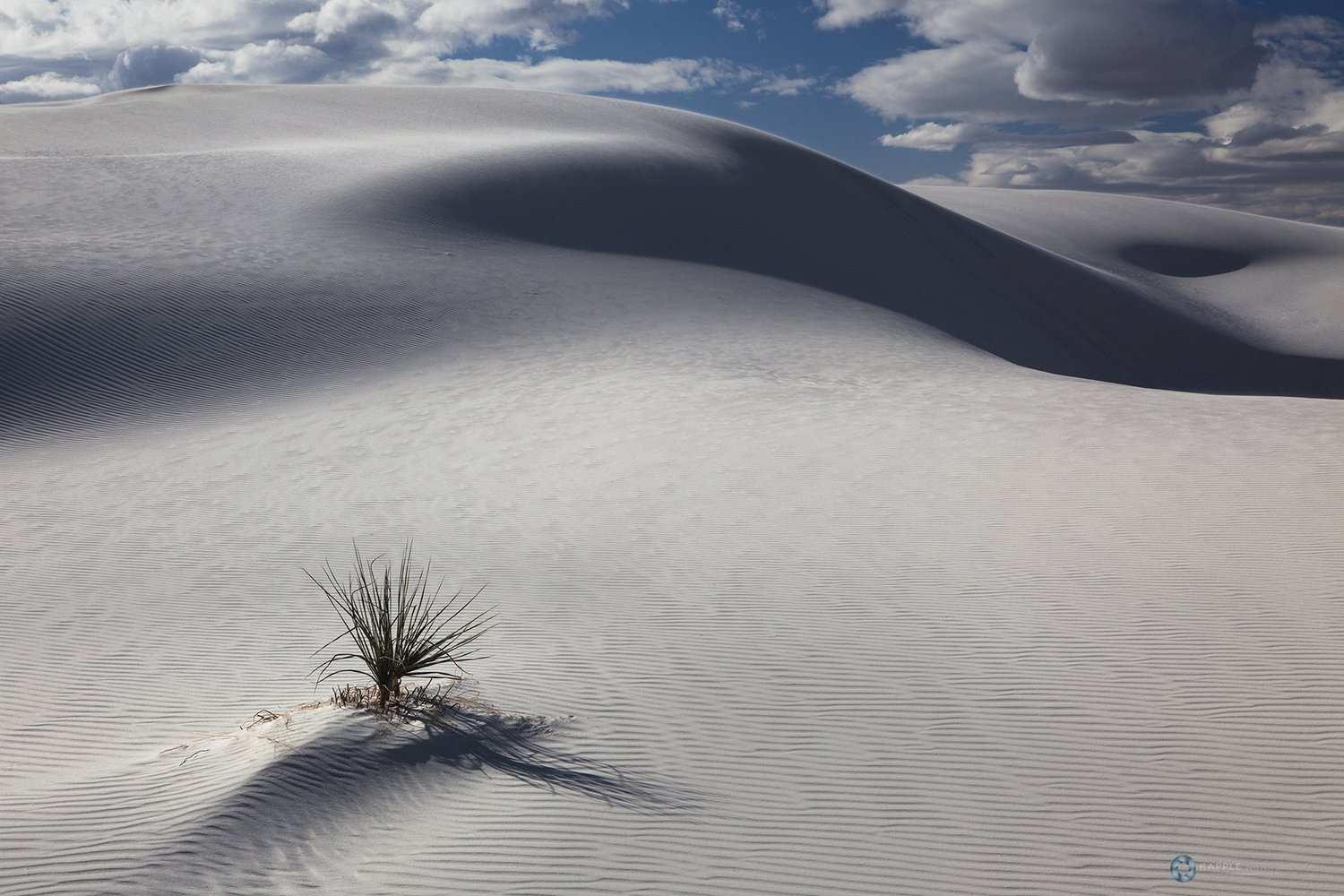 White Gypsum sand dunes in a desert with mountains, White Sands National Monument, New Mexico, USA