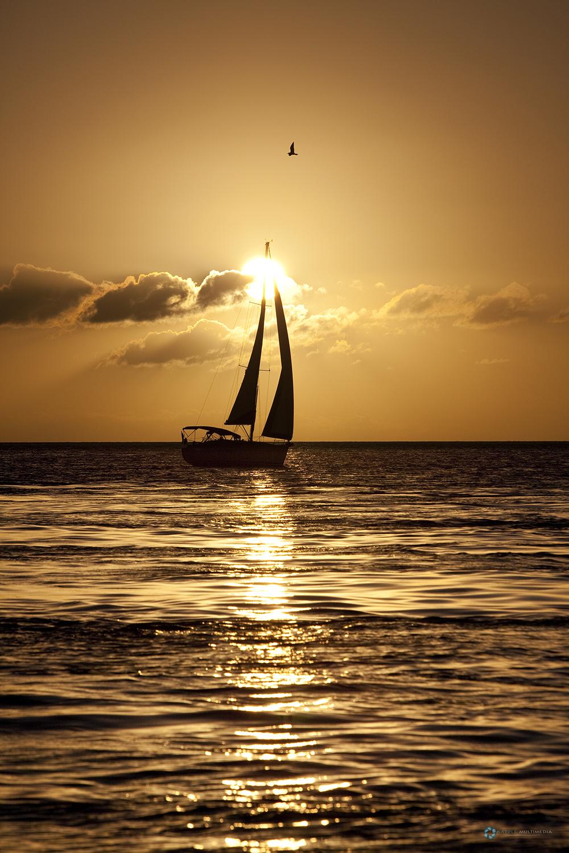 Florida Keys Florida USA